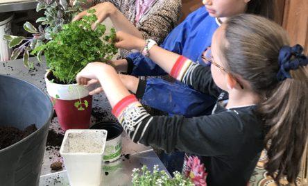 Atelier jardinage pour enfants