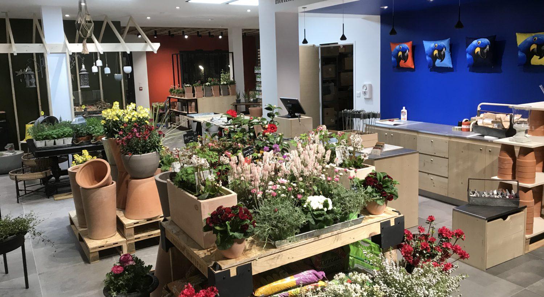 La boutique de plantes et objets déco qui propose des conseils en jardinage à Angers