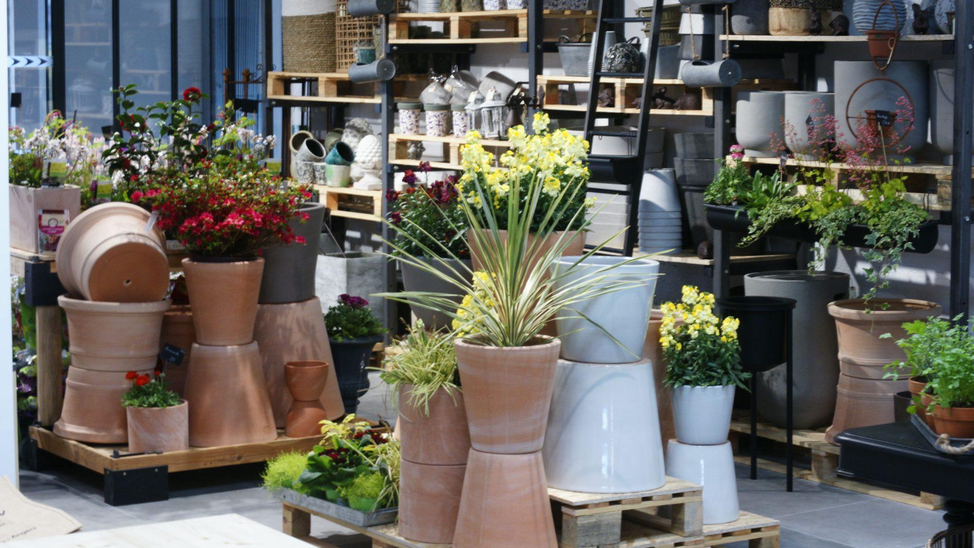 boutique de fleurs et objets déco à Angers